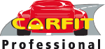 Carfit Professional